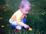 Andrew and dandelion