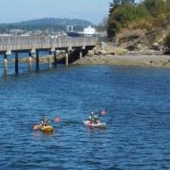 kayakers on Bellingham Bay