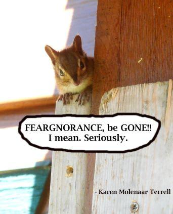 feargnorance