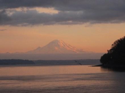 Mt. Rainier in sunset