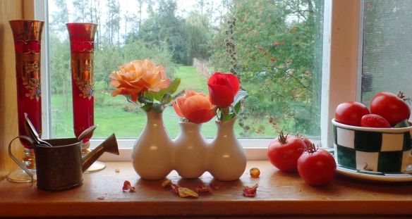 Windowsill (photo by Karen Molenaar Terrell)