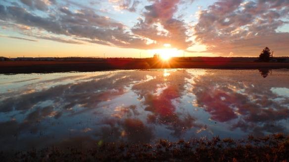 Bow Sunset Reflection (photo by Karen Molenaar Terrell)