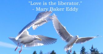 love is the liberator