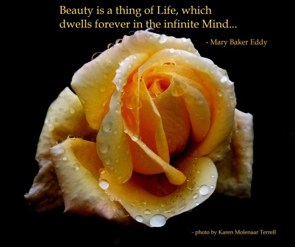 beauty is a thing of life 2