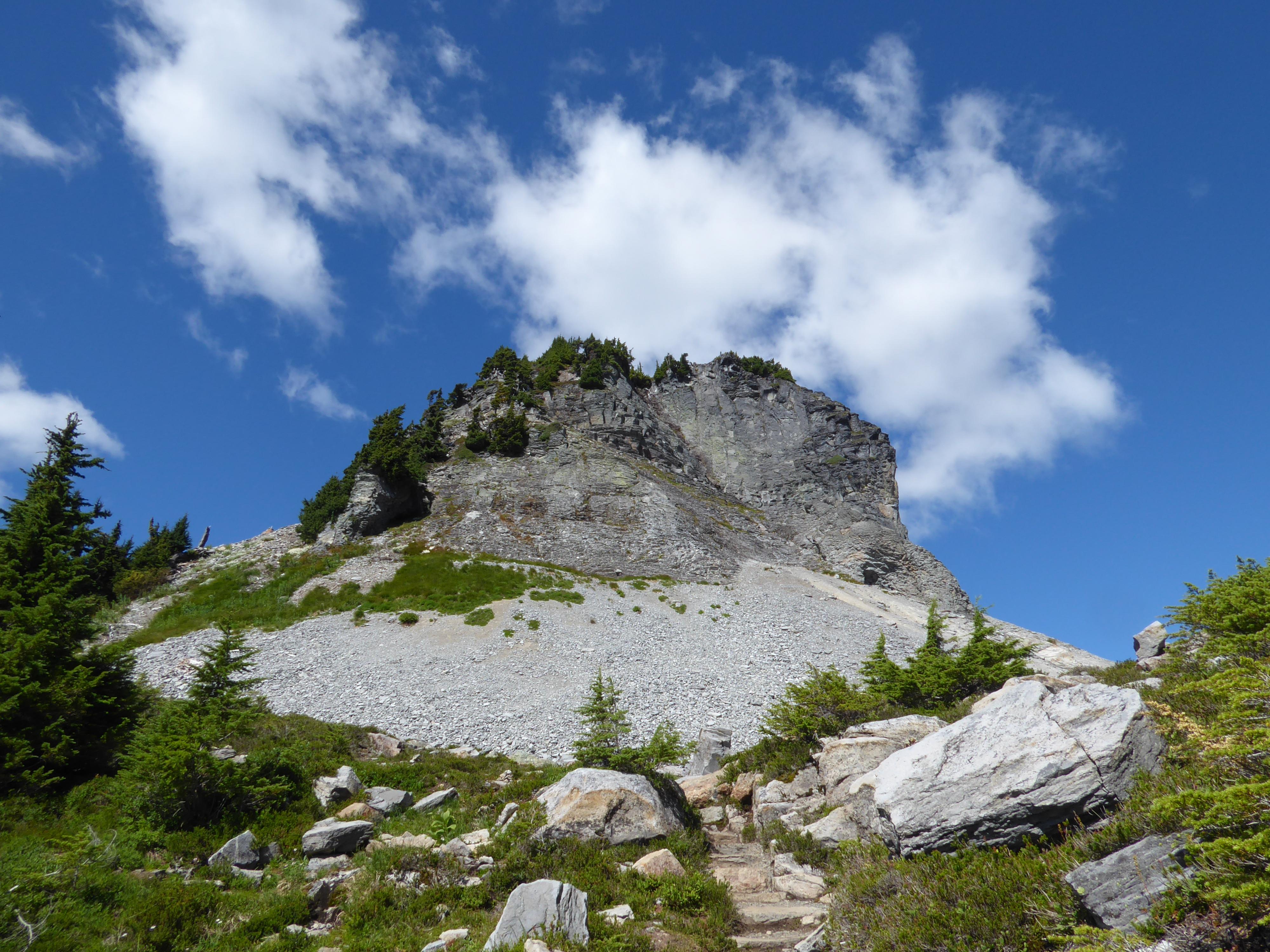 Table Mountain luminex (2)