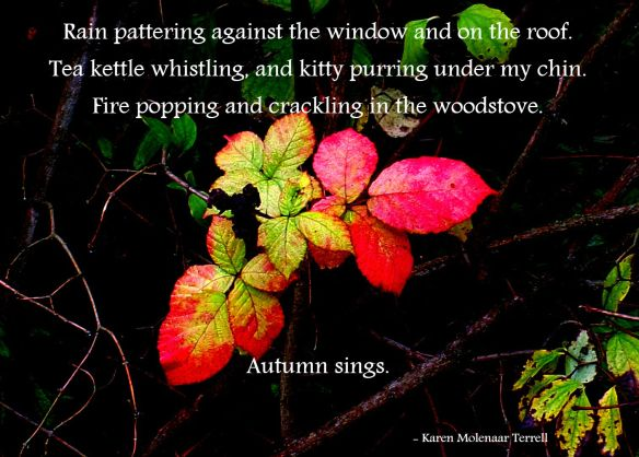 autumn-sings