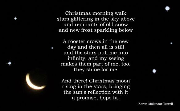 christmas-moon-2