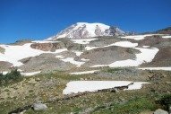 rainier from the panorama point trail (2)