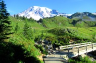 Mount Rainier (photo by Karen Molenaar Terrell)