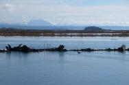 Skagit Bay