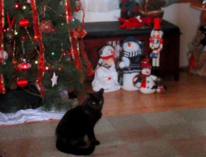 Sparky's First Christmas