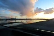 Flooded field, Skagit County, WA.