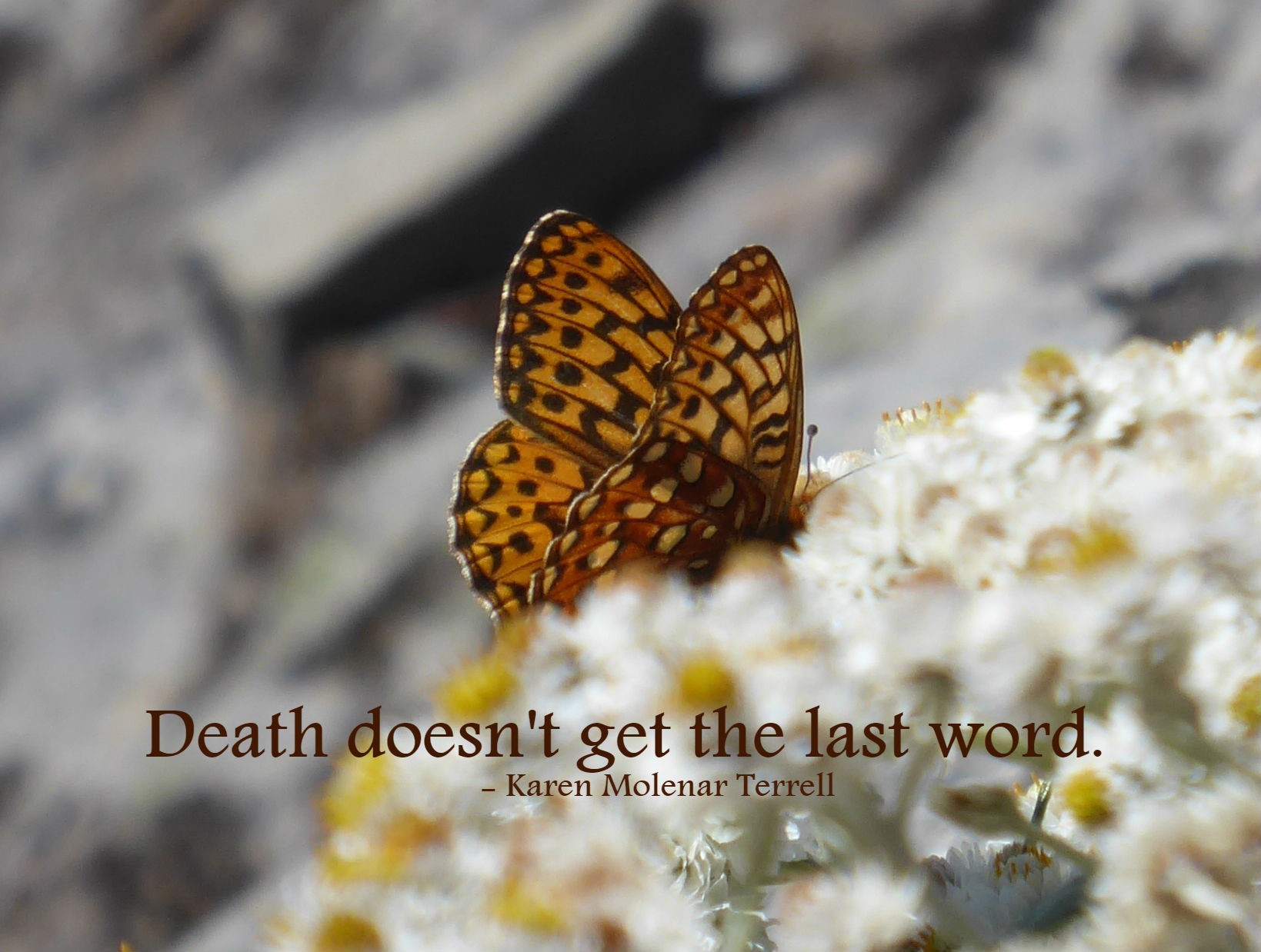 death doesnt get the last word