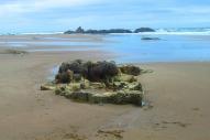barnacle castle
