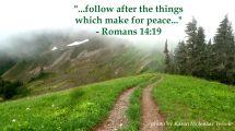 follow peace 2