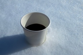 blueberry cider in the snow