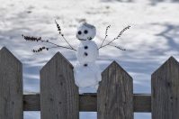 little snowman at the blueberry farm (2) this one