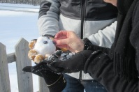 making little snowman (2) this one
