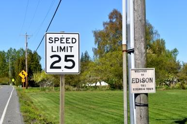 edison kindness town