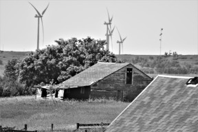 old black and white barn and windmills north dakota this one maybe
