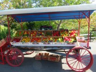 autumn olympia farmers market peppes