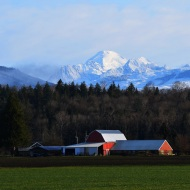 March: Mount Baker and a Red Barn