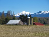 mount baker barn maybe this one easter